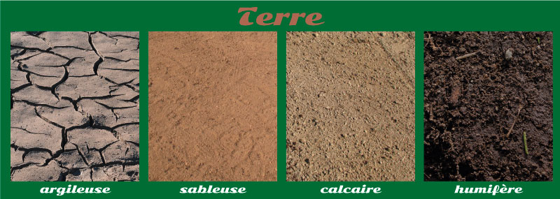 Les 4 types de sols