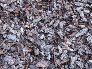 Du mulch en copeaux pour la permaculture
