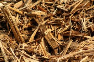 Copeaux de bois ou mulch pour la permaculture