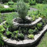 Une magnifique spirale aromatique en permaculture